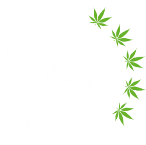 seeds 24