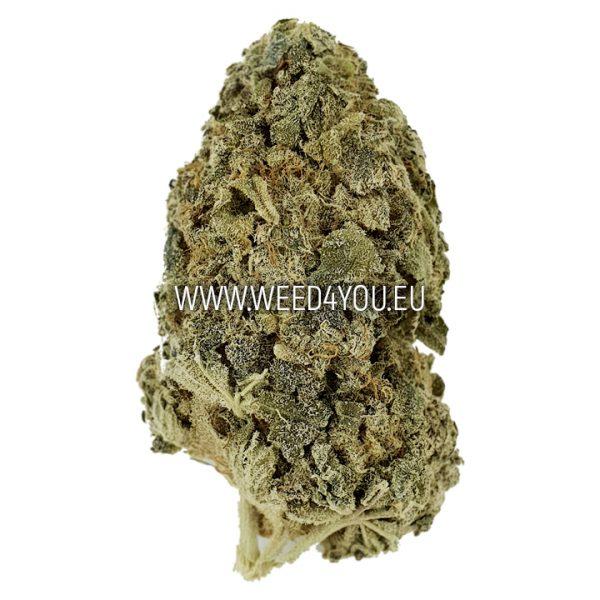 CBD Weed